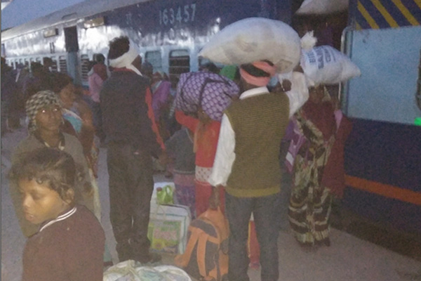 Bundelkhand leaving more than 5,000 people daily - Chhatarpur News in Hindi