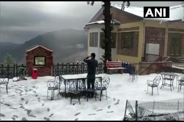 Shimla Narkanda received snow today - Shimla News in Hindi