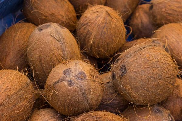 नारियल का यह उपाय करने से नहीं होगी धन-धान्य की कमी