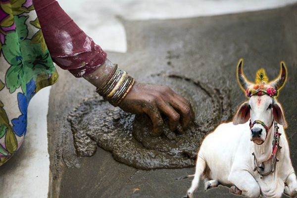 Pottery plants made from cow dung will grow - Lucknow News in Hindi