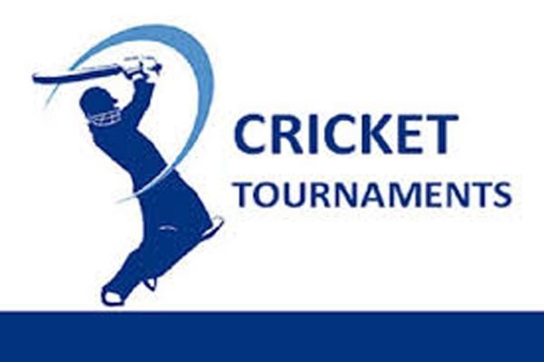 Organizing cricket competition - Jaipur News in Hindi