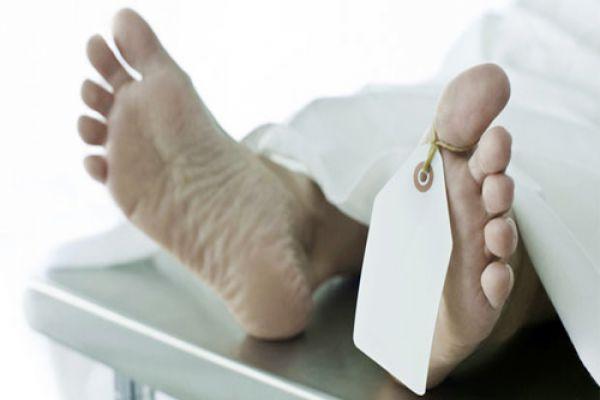 found dead Body in Sariska, fear of prey - Alwar News in Hindi