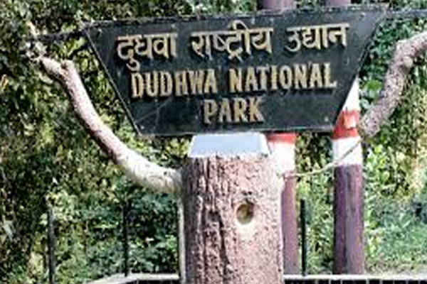Dudhwa National Park is open, Tourist attraction - Lucknow News in Hindi