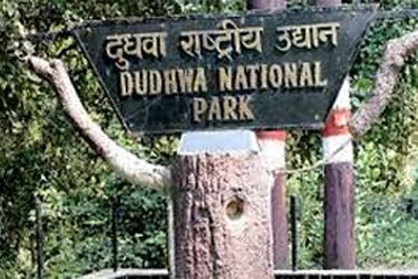 Yogi government government will open Dudhwa National Park for tourists from November 1 - Lucknow News in Hindi