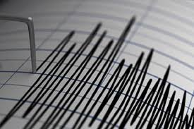 Tremors of earthquake in Delhi NCR; earthquake intensity 4.6 on Richter scale - Delhi News in Hindi