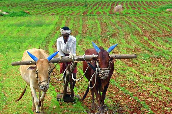 Kisan Sarathi will provide correct information to farmers in their language - India News in Hindi