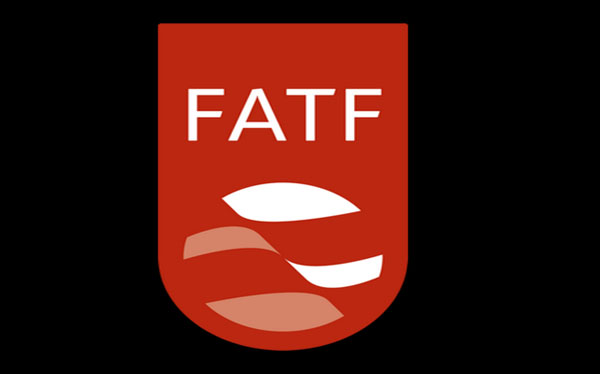 Pakistan responded to FATF questionnaire - World News in Hindi