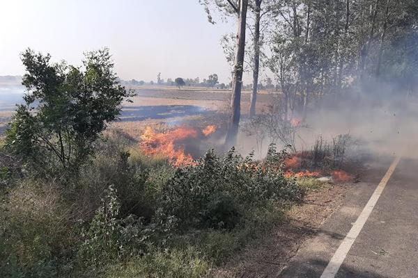 किसानों ने खेतो में लगाई आग, लोगों का जीना हुआ बेहाल
