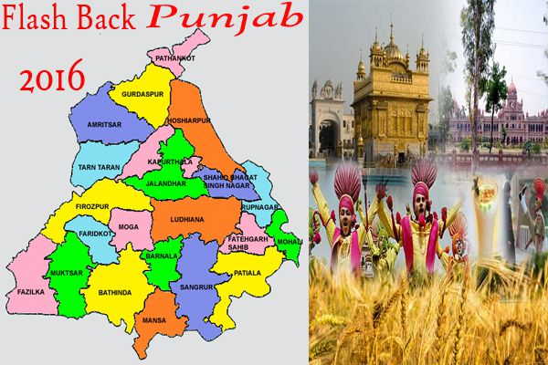 flash back 2016 from punjab in high court and supreme court - Punjab-Chandigarh News in Hindi