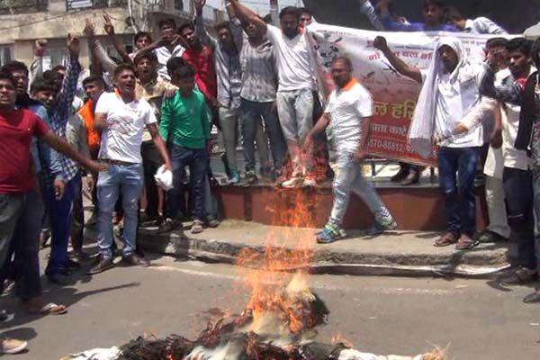 Gao Raksha Dal activists protest At kaithal on kerla issue - Kaithal News in Hindi