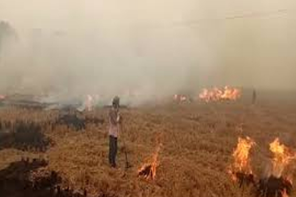 Haryana  farmers held hostage to officers who came to prevent stubble burning - Fatehabad News in Hindi