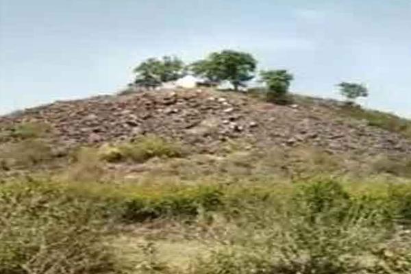 सोनभद्र : जड़ी-बूटी नष्ट होने से चरमराया आदिवासियों का आर्थिक ढांचा!