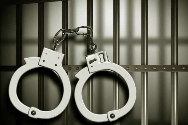 Hemp caught by illegal drug smuggling in Jaipur - Jaipur News in Hindi