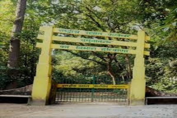 Haryana to conduct mushroom survey in Kalesar National Park - Chandigarh News in Hindi