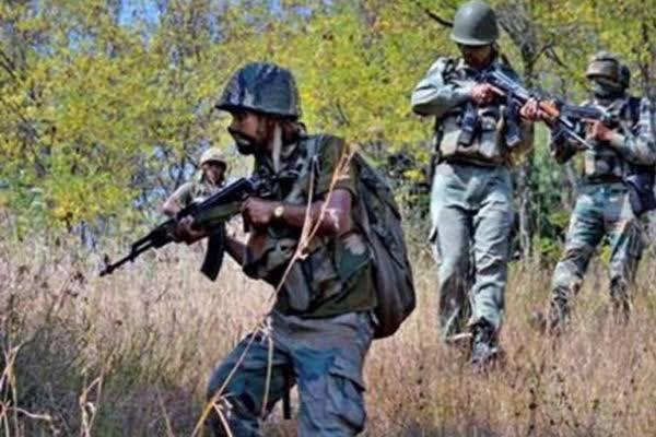 Hizbul chief operational commander Saifullah killed - Srinagar News in Hindi
