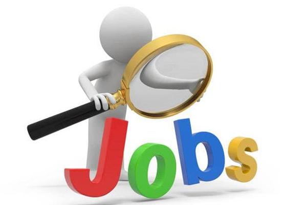 NHM हरियाणा भर्ती 2019 : नर्स, ANM, असिस्टेंट सहित अन्य पदों पर निकली भर्तियां