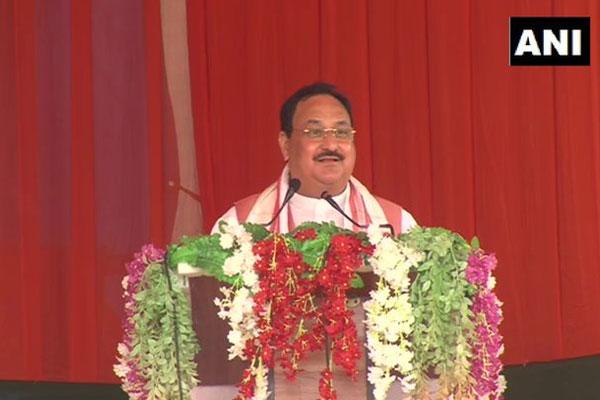Assam Election: J.P. Nadda attacks Priyanka, says- Tea leaf breaking season comes in April and not in March - Guwahati News in Hindi