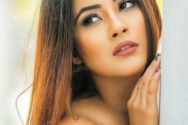 Kartik Aaryan has a funny quip for Shehnaaz Gill - Bollywood News in Hindi