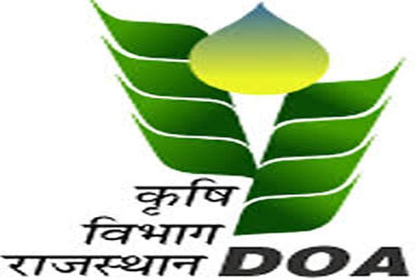 100 custom hiring centers to open in Rajasthan - Jaipur News in Hindi