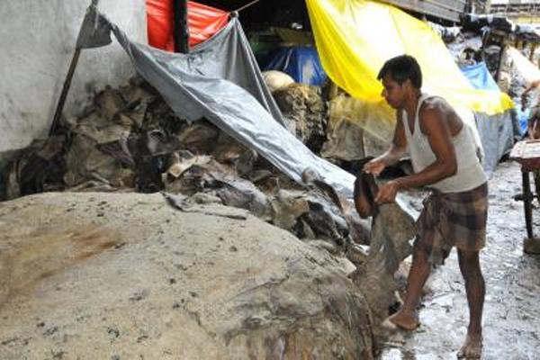 कानपुर में 95 टेनरी अनिश्चितकाल के लिए बंद