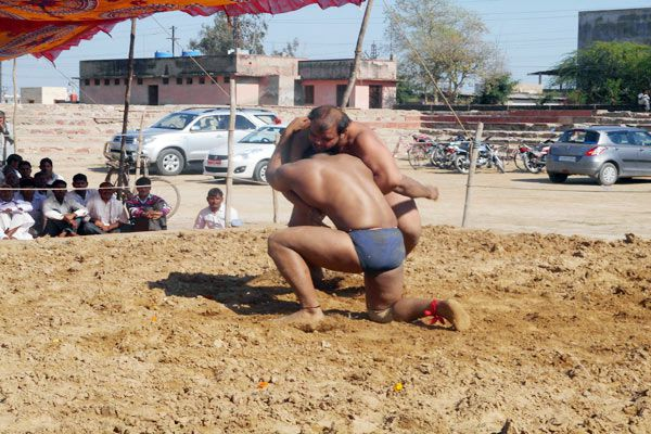 the first day Compared Interesting in the wrestling stadium - Bharatpur News in Hindi