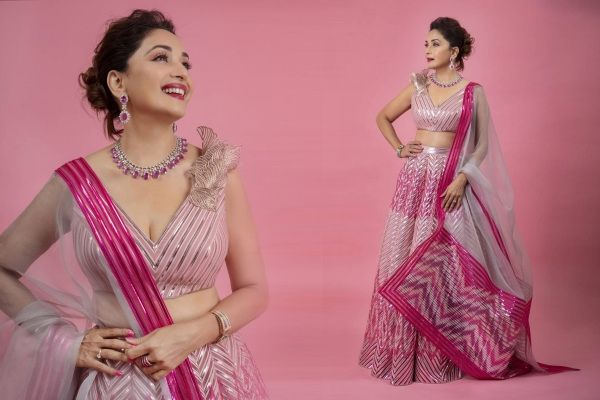 Madhuri Dixit Nene looks pretty in pink in new photo-op - Bollywood News in Hindi