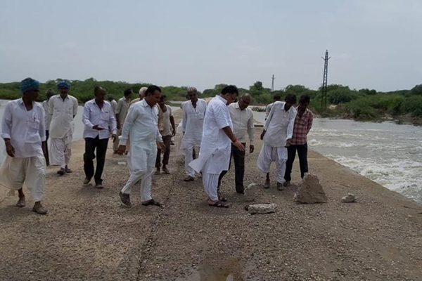 MP Devji Patel visits Luni river flow area of Nehar - Jalore News in Hindi