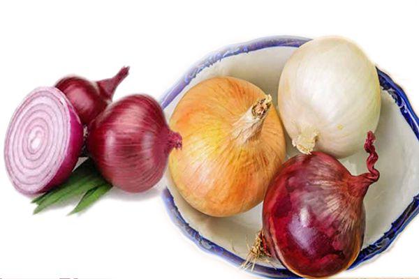 Health benefits of onion - Health Tips in Hindi