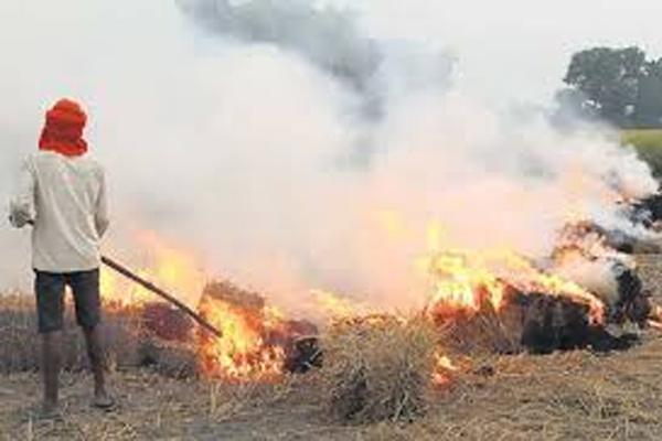 पराली जलाने से रोकने का अभियान, अधिकारियों की देखी जाएगी गंभीरता - मुख्य सचिव