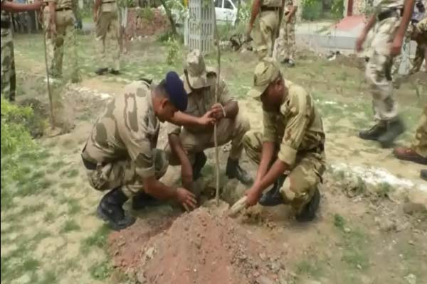 51000 saplings were planted in Ghaziabad - Ghaziabad News in Hindi