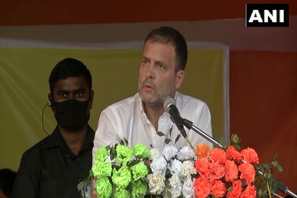 Assam election: Congress leader Rahul Gandhi said - CAA will not come here, no matter how much the people of BJP dance and sing. - Guwahati News in Hindi