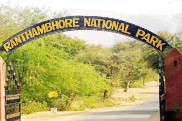 नेशनल पार्क रणथंभौर अभयारण्य में सीसीटीवी कैमरे चोरी, दूसरे में कैद हुई वारदात