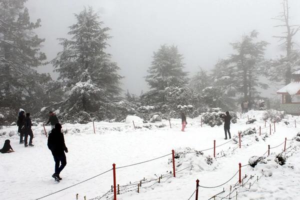 Respite from intense Kashmir cold wave after Jan 31 - Srinagar News in Hindi