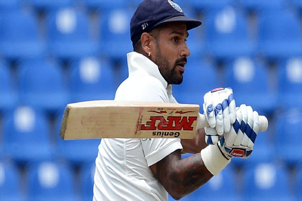 Let critics do their work: Dhawan - Cricket News in Hindi
