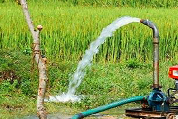 50% subsidy to farmers on paddy harvesting machines - Punjab-Chandigarh News in Hindi