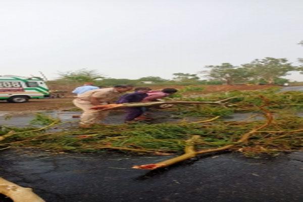चक्रवात तौकते - राजस्थान में आम इकट्ठा करते समय 4 की मौत
