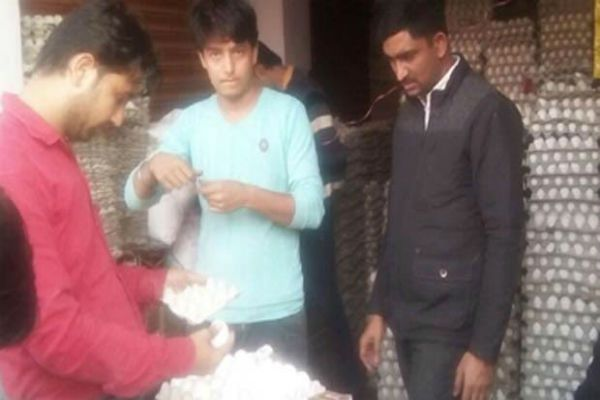 chinese eggs found in agra - Agra News in Hindi