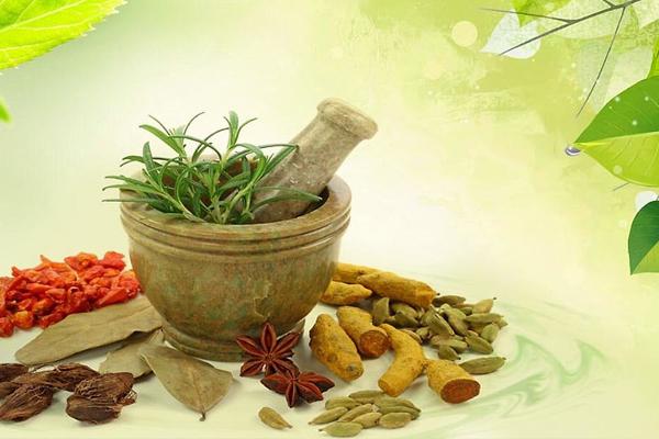 घर-घर औषधि योजना वृक्षायुर्वेद का व्यापक, अनूठा व नवाचारी क्रियान्वयन है