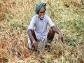Debt waiver is the biggest scheme of farmers interest till now