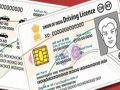Caught fake licenses and insurance to a gang, put millions of slap
