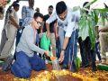 आमिर खान ने 'ग्रीन इंडिया चैलेंज' में भाग लिया