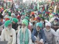 Farmer leaders urge political parties to postpone election campaign in Punjab