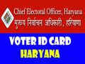 Chief Electoral Officer giving this information to the voter ID