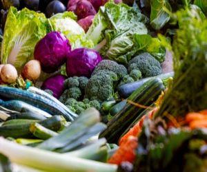 हिमाचल में जल्द बनेगी खाद्य उत्पादों के परीक्षण की प्रयोगशाला