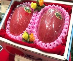 Half red and half yellow is the world most expensive mango, knowing the price will blow your senses - Hindi News